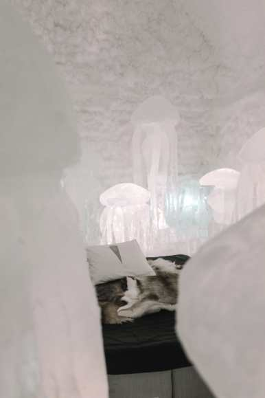 Here's What The ICEHOTEL Looks Like Inside (15)