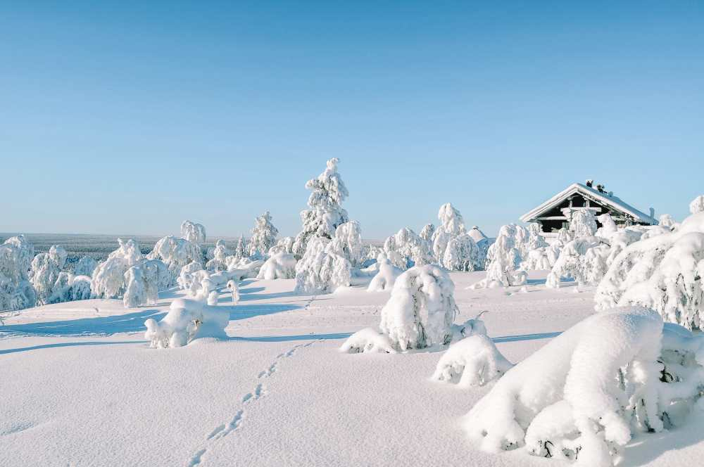 12 Of The Best Things to Do in Lapland, Finland (18)
