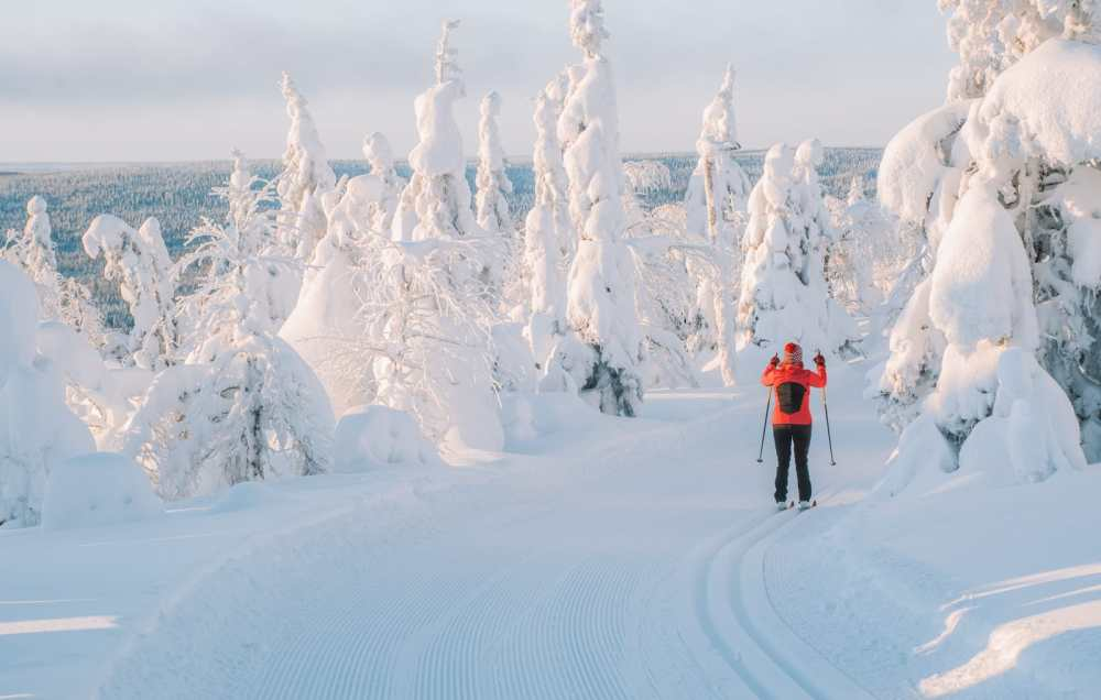 12 Of The Best Things to Do in Lapland, Finland (12)