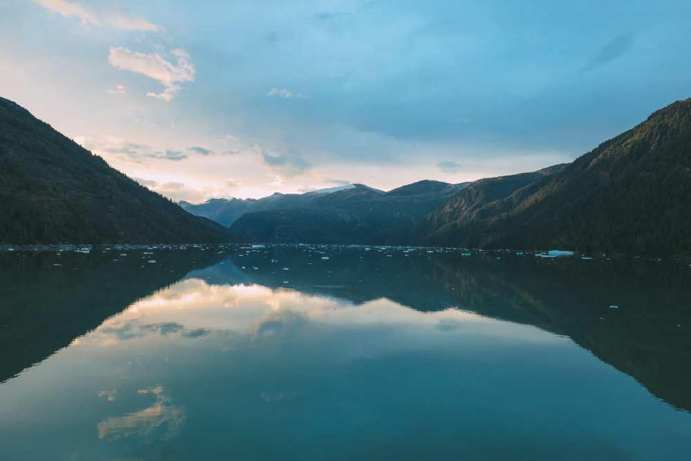 Sailing The Impressive Tracy Arm And Endicott Arm Fjord To The Dawes Glacier, Alaska (6)