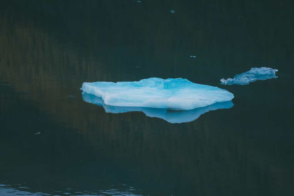 Sailing The Impressive Tracy Arm And Endicott Arm Fjord To The Dawes Glacier, Alaska (7)