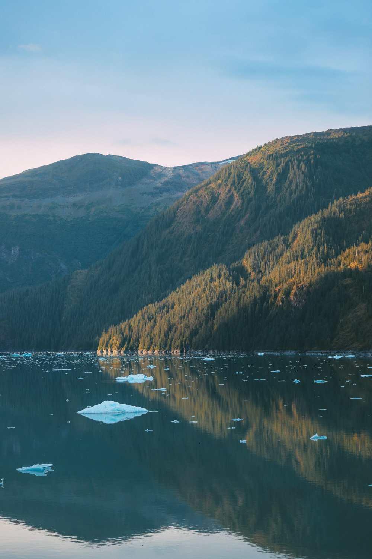 Sailing The Impressive Tracy Arm And Endicott Arm Fjord To The Dawes Glacier, Alaska (8)