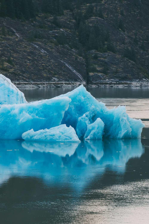 Sailing The Impressive Tracy Arm And Endicott Arm Fjord To The Dawes Glacier, Alaska (14)