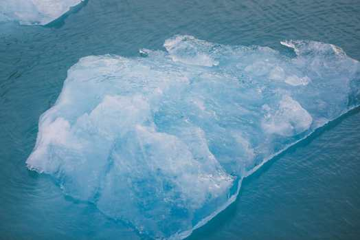 Sailing The Impressive Tracy Arm And Endicott Arm Fjord To The Dawes Glacier, Alaska (24)
