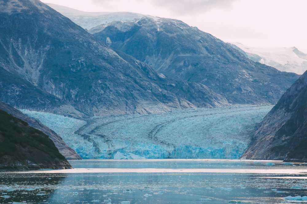 Sailing The Impressive Tracy Arm And Endicott Arm Fjord To The Dawes Glacier, Alaska (25)