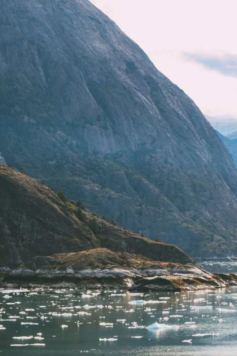 Sailing The Impressive Tracy Arm And Endicott Arm Fjord To The Dawes Glacier, Alaska (34)