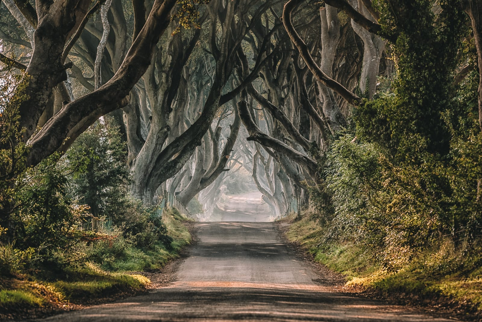 15 Best Places In Northern Ireland To Visit (4)