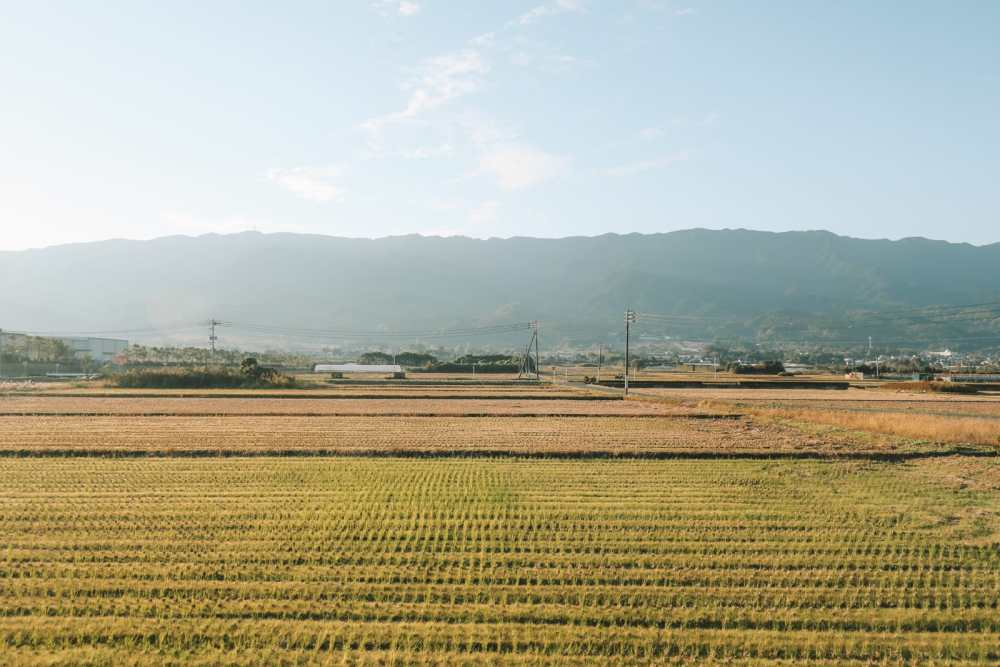 Exploring Kyushu On The Seven Stars... (1)