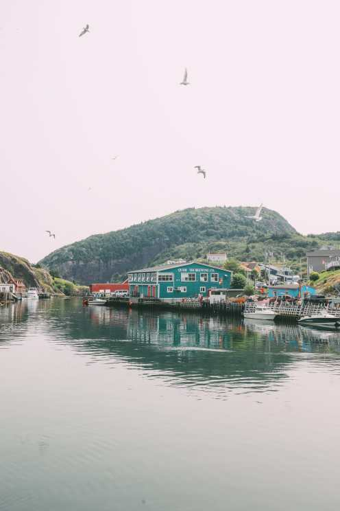 24 Hours In St Johns, Newfoundland (24)
