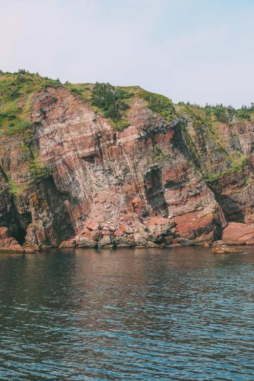 Searching For Puffins In Newfoundland, Canada (3)