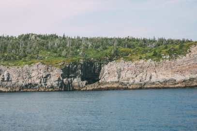 Searching For Puffins In Newfoundland, Canada (28)