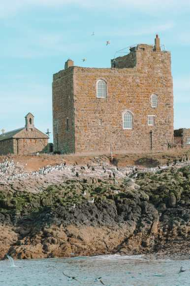 Visiting The Beautiful Bamburgh Castle & Farne Islands, England (9)