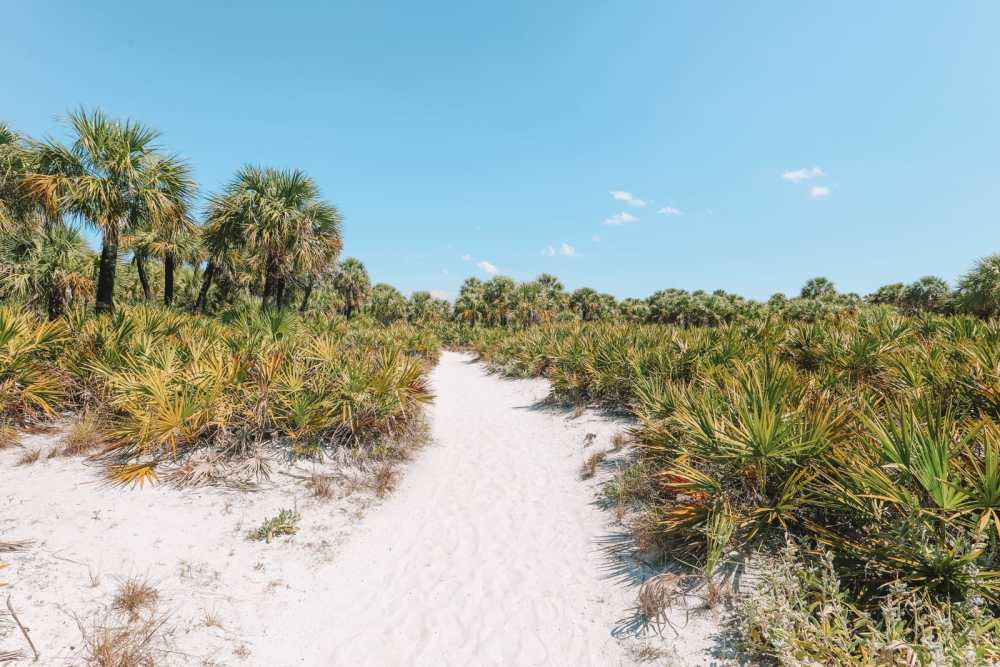 48 Hours In Clearwater Beach, Florida (40)