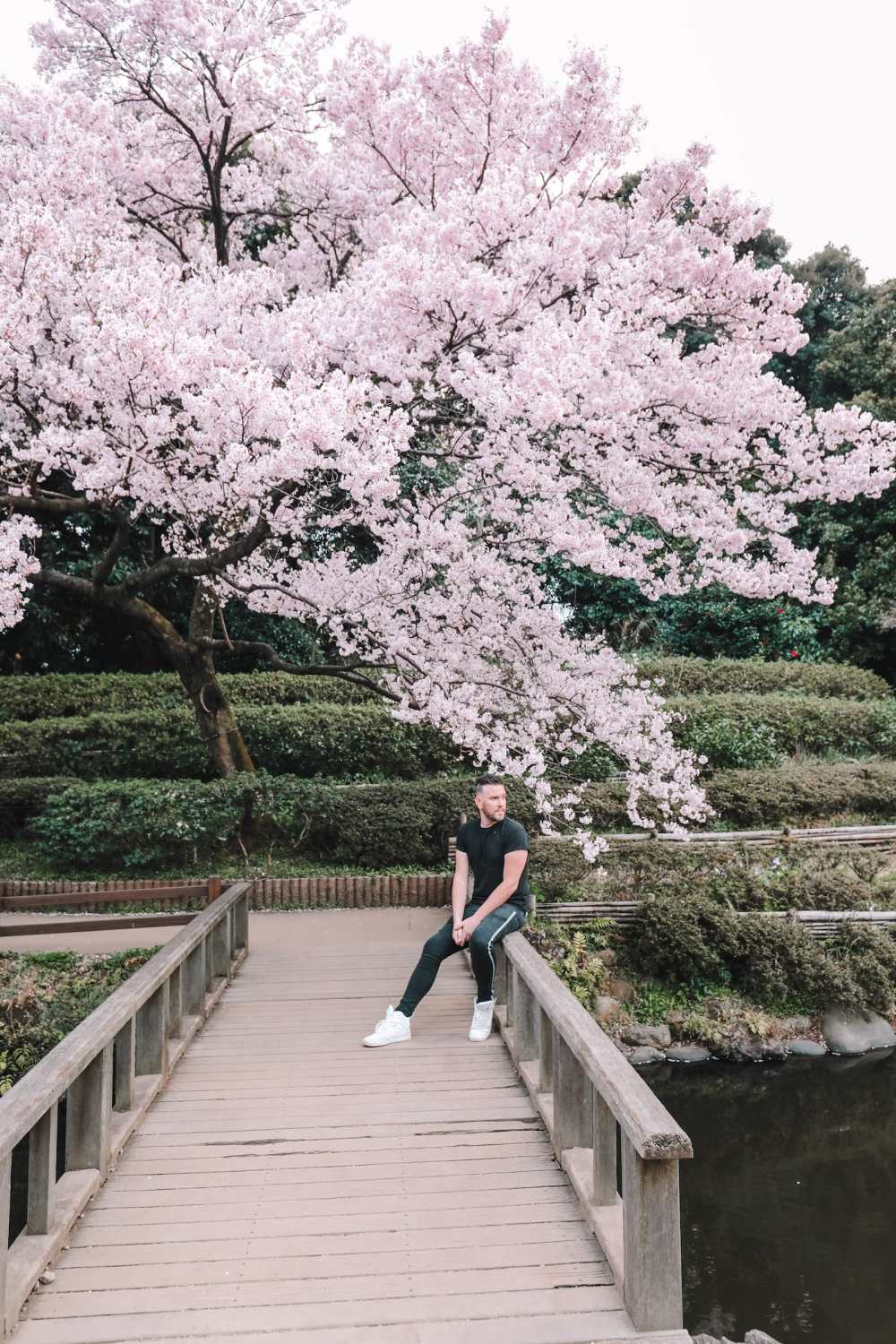 Photos And Postcards From Tokyo, Japan (25)