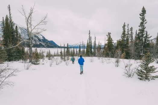 Driving Canada's Epic Icefields Parkway And Finding The Frozen Bubbles Of Abraham Lake (20)