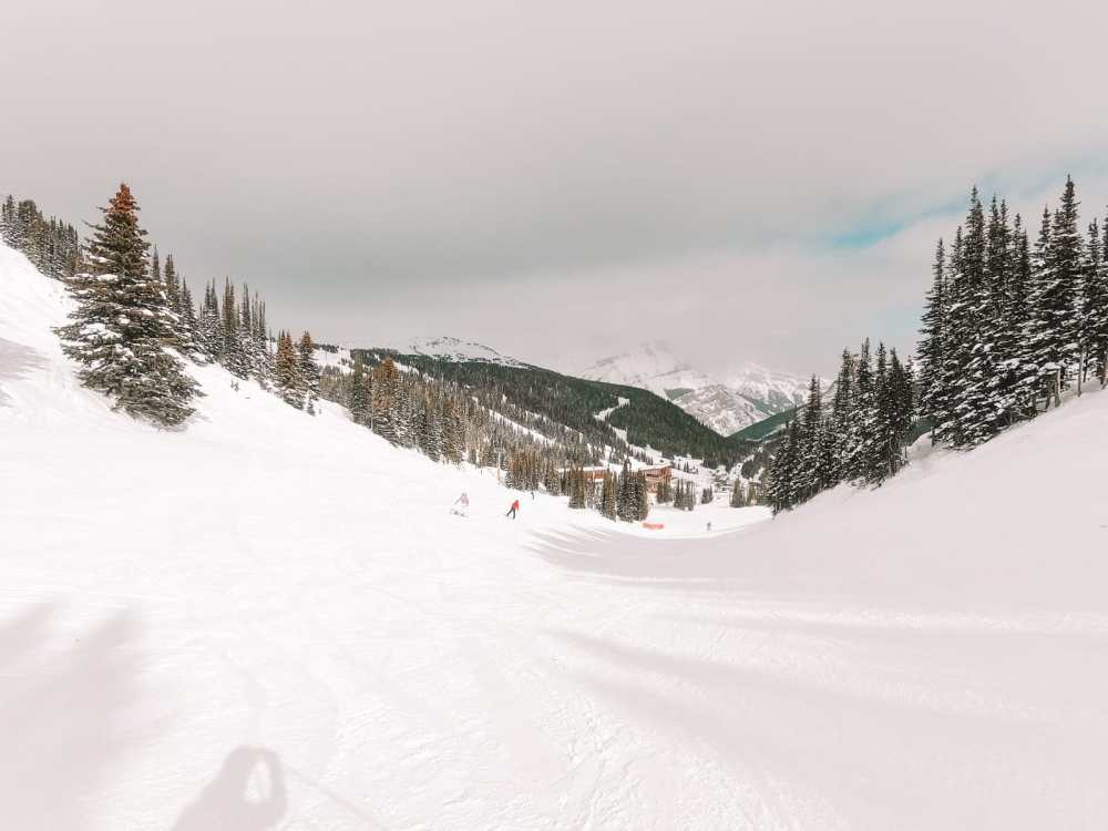 Finding Wild Moose And Skiing In Sunshine Village... In Banff, Canada (10)