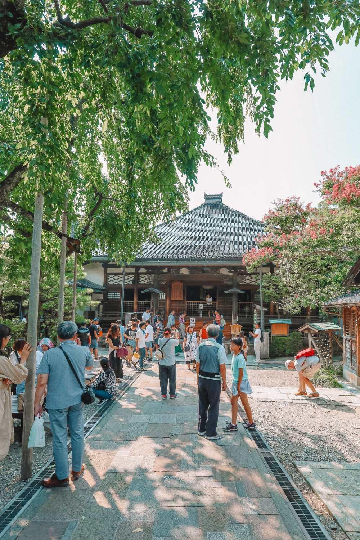 Visiting The Geisha District And Kaiseki Dining In Kanazawa - Japan (9)