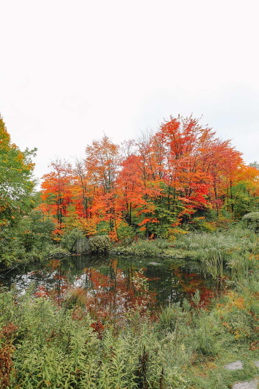 Exploring Sacacomie - Quebec's Stunning 'Hidden' Gem (7)