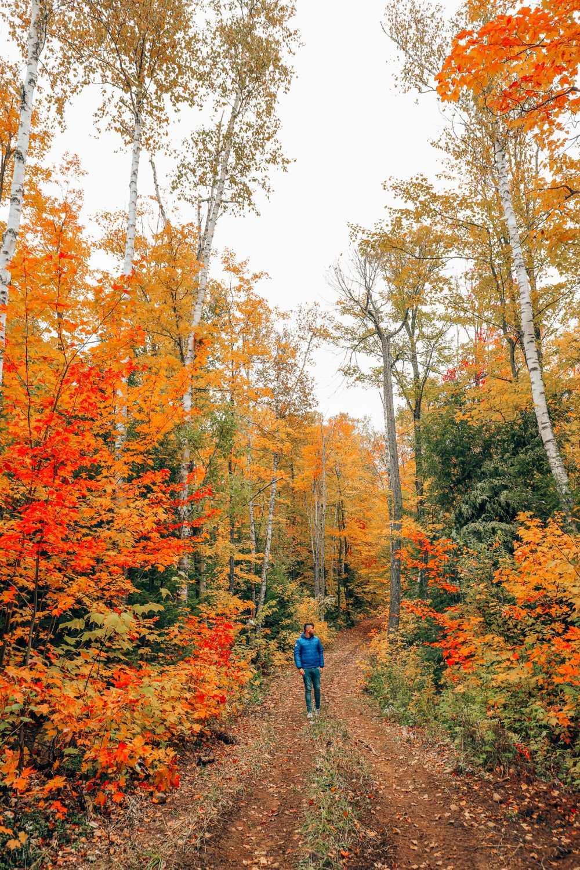 Exploring Sacacomie - Quebec's Stunning 'Hidden' Gem (41)