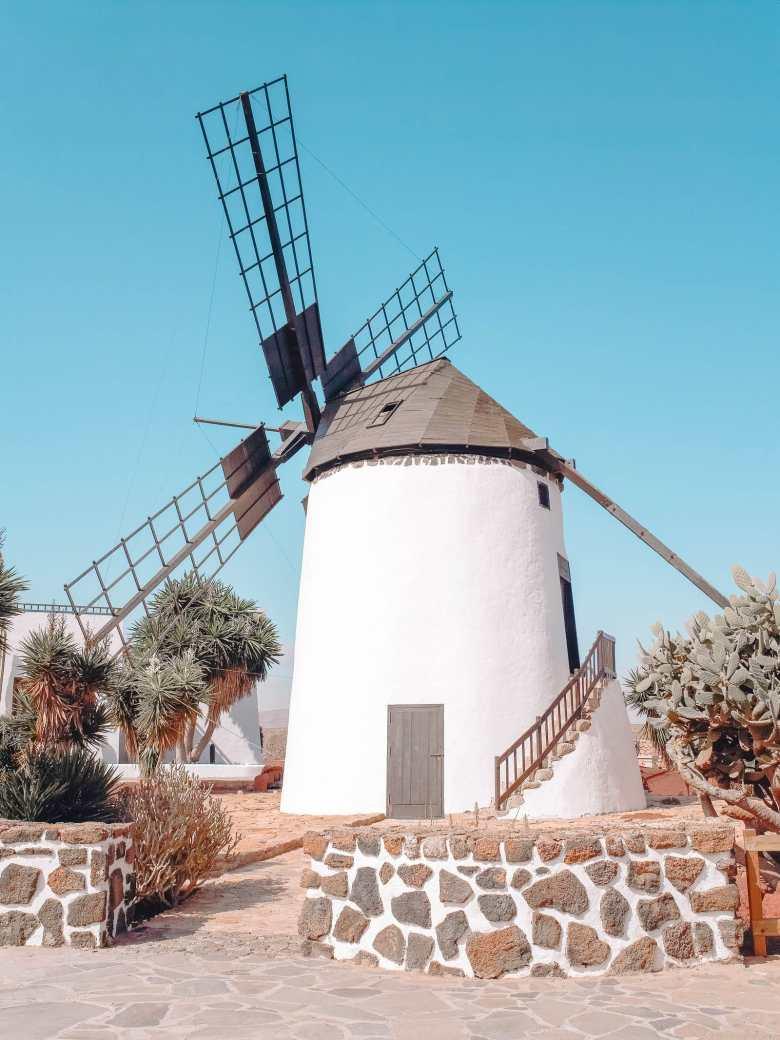 14 Best Things To Do In Fuerteventura (11)