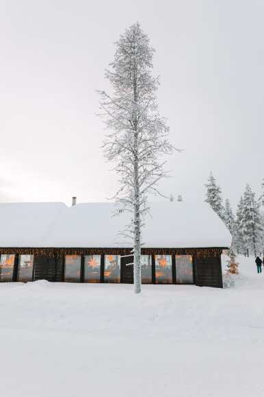 The Northern Lights Village And Star Arctic... In Lapland, Finland (8)
