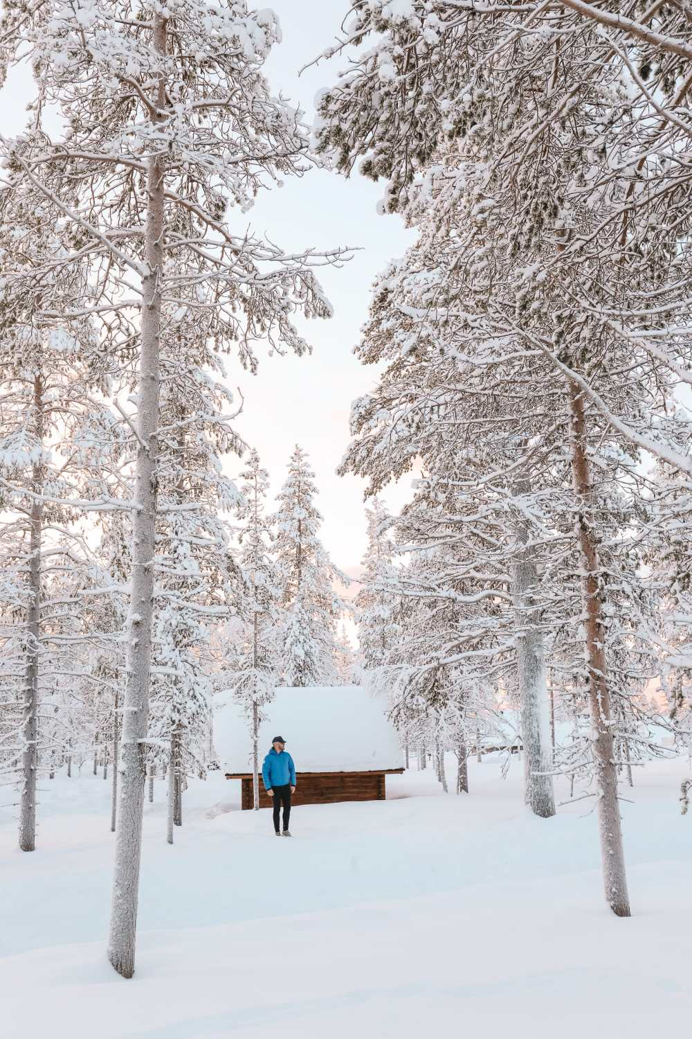 The Northern Lights Village And Star Arctic... In Lapland, Finland (24)