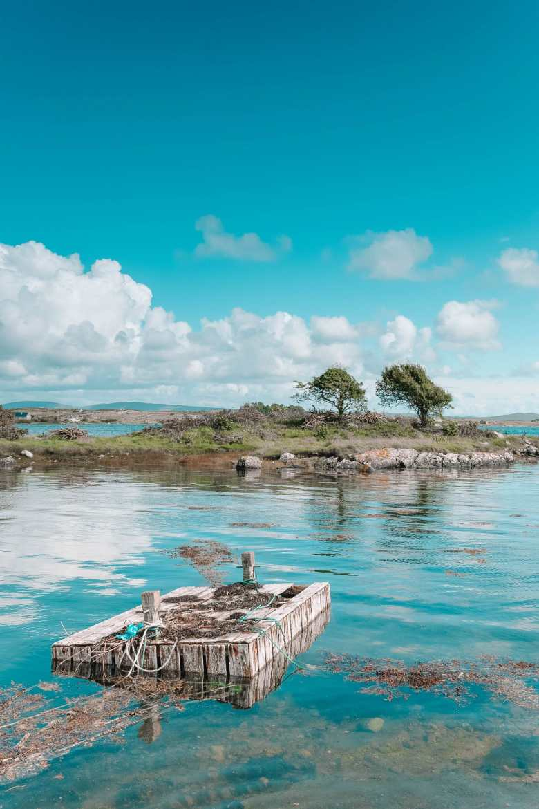 Best Things To Do In Galway (12)