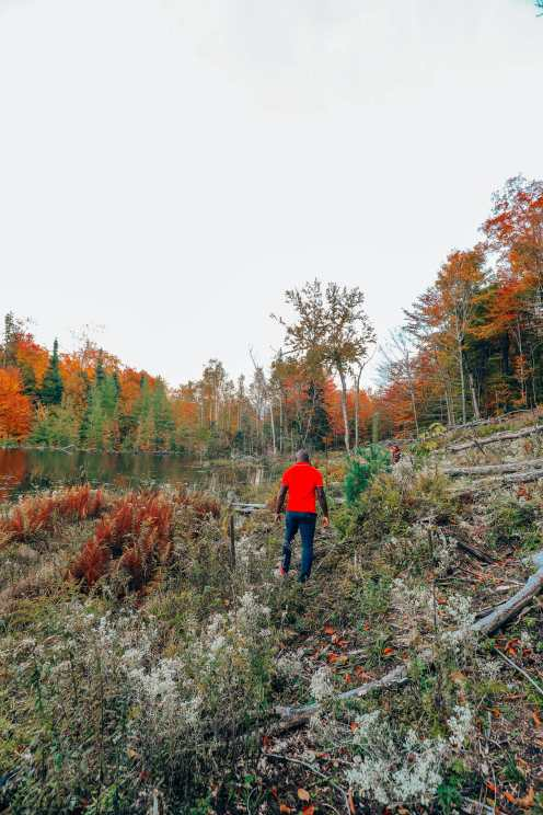 Getting Lost In Nature (And With Beavers) In Quebec, Canada (21)