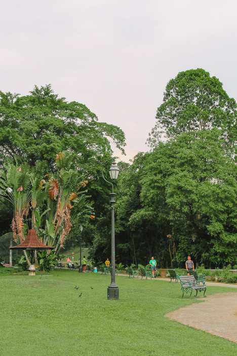 10 Unexpected Fun Things To Do In Singapore (28)