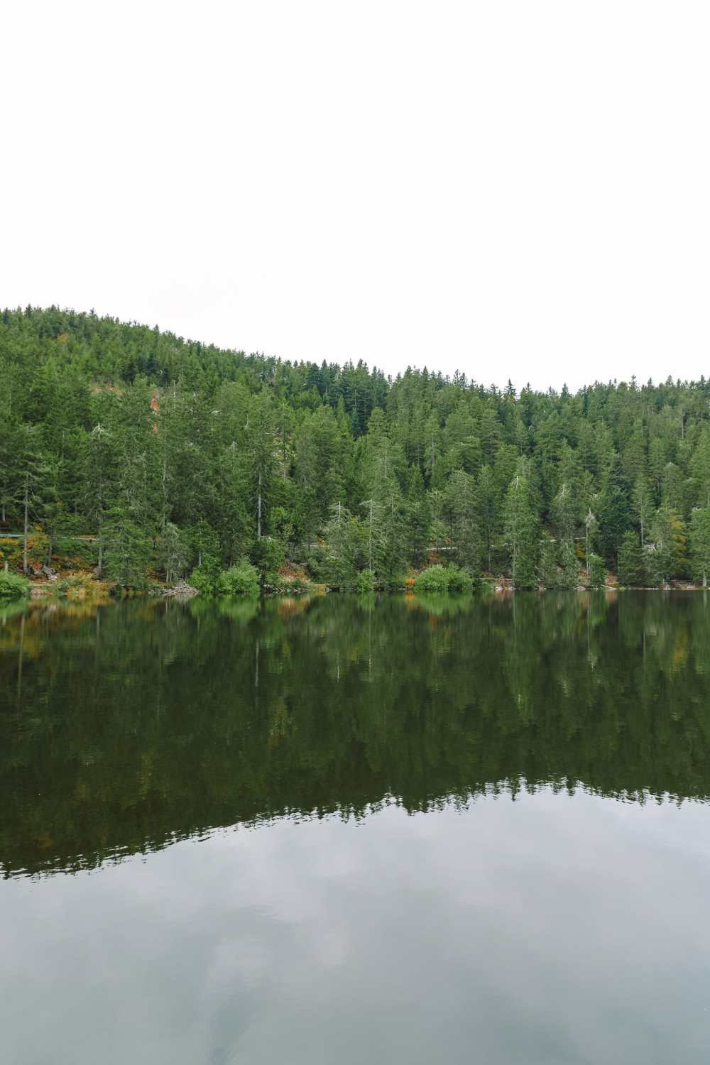 Best Things To Do In The Black Forest (6)