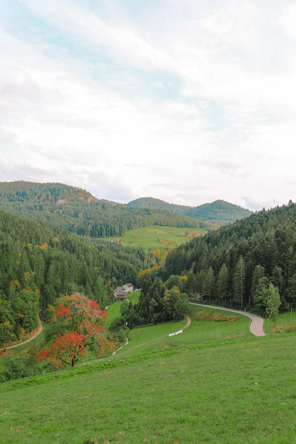 Best Things To Do In The Black Forest (39)