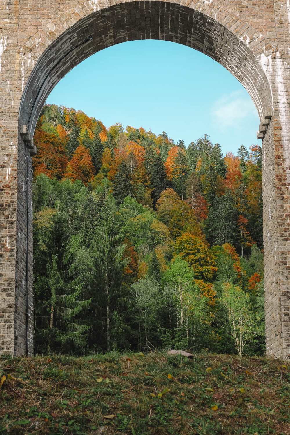 Best Things To Do In The Black Forest (33)