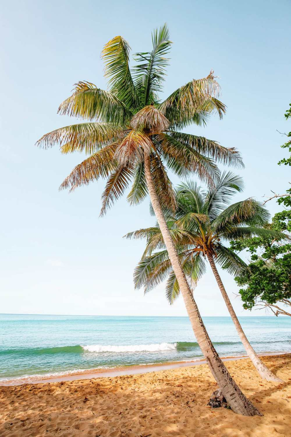 Best Things To Do In Puerto Rico (26)