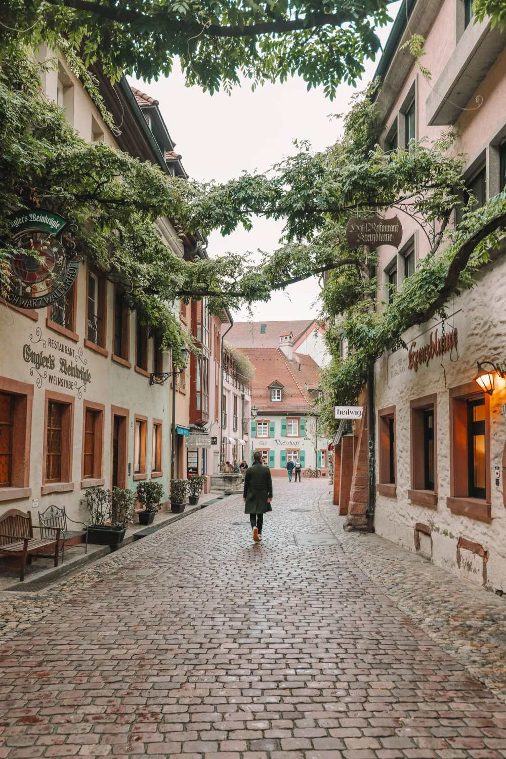 Best Things To Do In The Black Forest (51)