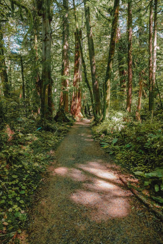 Best Hikes In British Columbia (6)