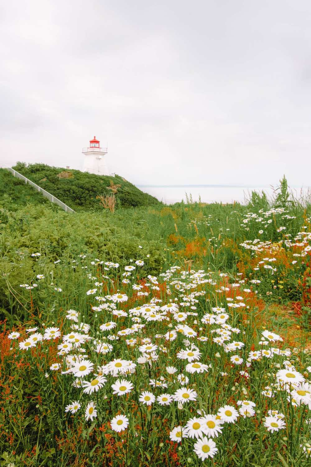Best Things To Do In Moncton (2)