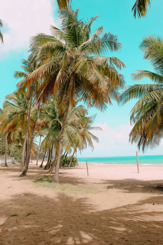 Best Beach in San Juan Puerto Rico