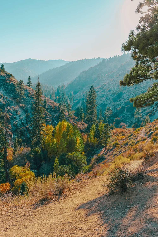 Hikes near Reno