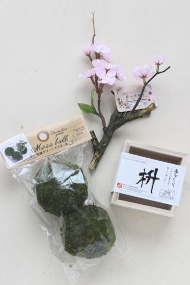 sakura-bonsai-2