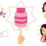 【ガッテン!】コラーゲンで関節痛や傷の修復に影響!100%効果発揮の活用術