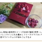 【えびせん家族の新食感スイーツ、FUKUMI(福味)感想・レビュー】贈り物、バレンタインにもお薦め!フリーズドライのいちごにベルギー産ホワイトチョコが染みこんでるよ