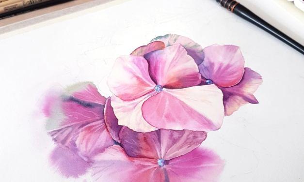 Watercolour Masterclass – Hortensia