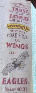 Soar High on Wings