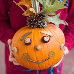 No Carve Pumpkin Decorating for Kids to Get Creative No Carve Nature Pumpkins