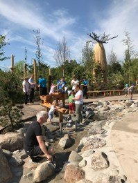 Baobab from water play 1