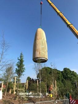 Baobab takeoff