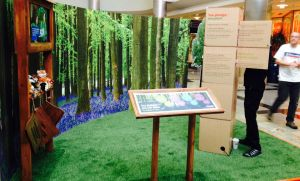Hammerson Big Positive Weekend forest