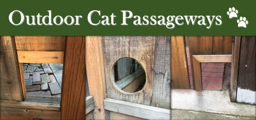 Outdoor Cat Door in Fence Gate