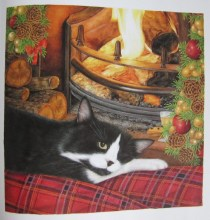 our cats LOVE lounging by the fire!