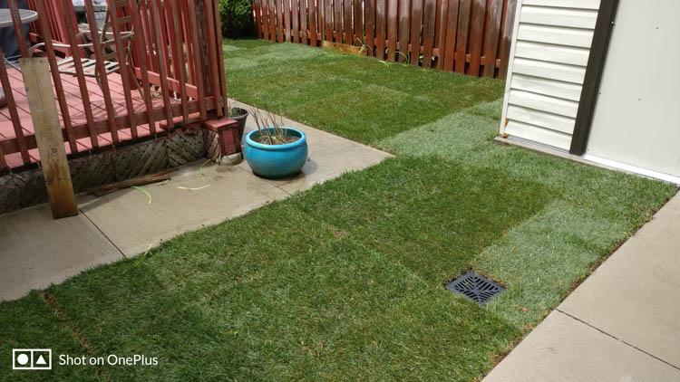 Resulting in a beautiful green yard!